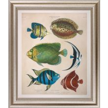 Large Antique Fish II 34W x 40H