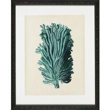 Aqua Coral on Khaki I 18W x 22H